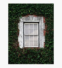 The Ivy Window Photographic Print