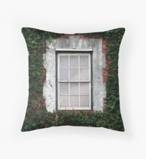 The Ivy Window Throw Pillow