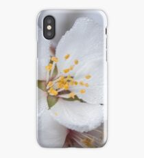 ~ Allow Yourself to Blossom ~ iPhone Case/Skin