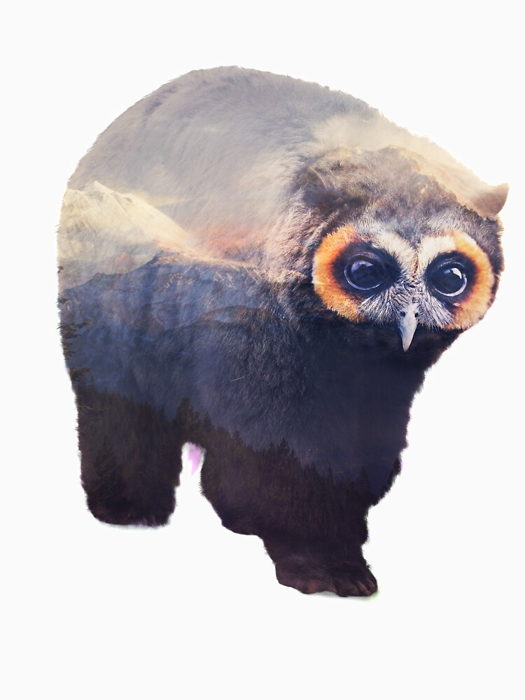 Owlbear in Mountains by andywynn