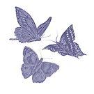 3 blue butterflie by Lara Wolf