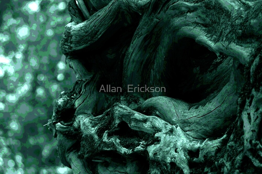 Old One by Allan  Erickson