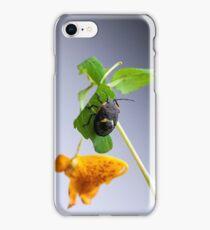 Stink Bug iPhone Case/Skin