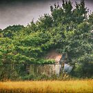 Derelict Barn  by Nigel Bangert