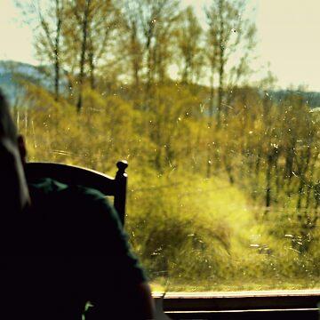 the window by thetasigma0