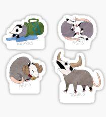 Opossum Zodiac Sticker Sheet 1 Sticker