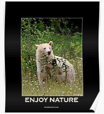 Enjoy Nature Spirit Bear Motivational Poster Poster