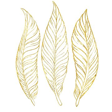 Three Gold Feathers by coasthouse