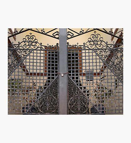 The Gates  Photographic Print
