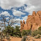 Peace Sign in Arches National Park by Sue Smith