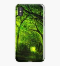 green forest zelda iPhone Case/Skin