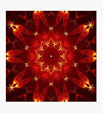 Autumn Starlight Photographic Print