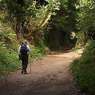 Lone walker by Richard McCaig