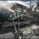 The Vintage of Flight  by ArtbyDigman