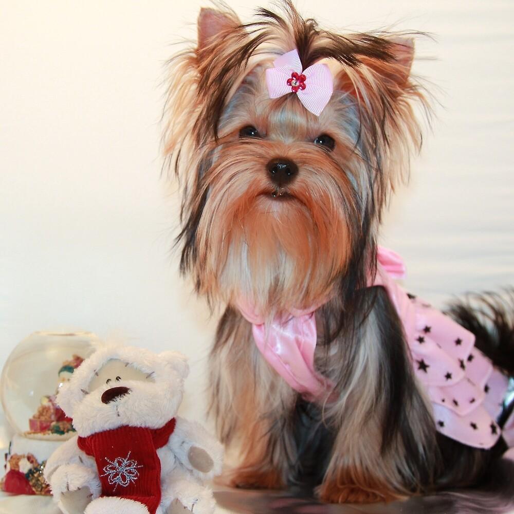 Cute Yorkie Puppy In Pink Dress By Yana Reint By Yanareint Redbubble