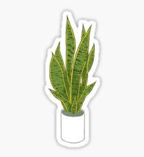 Sansevieria Trifasciata / Snake Plant (white) Sticker