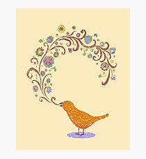 Birdsong Photographic Print