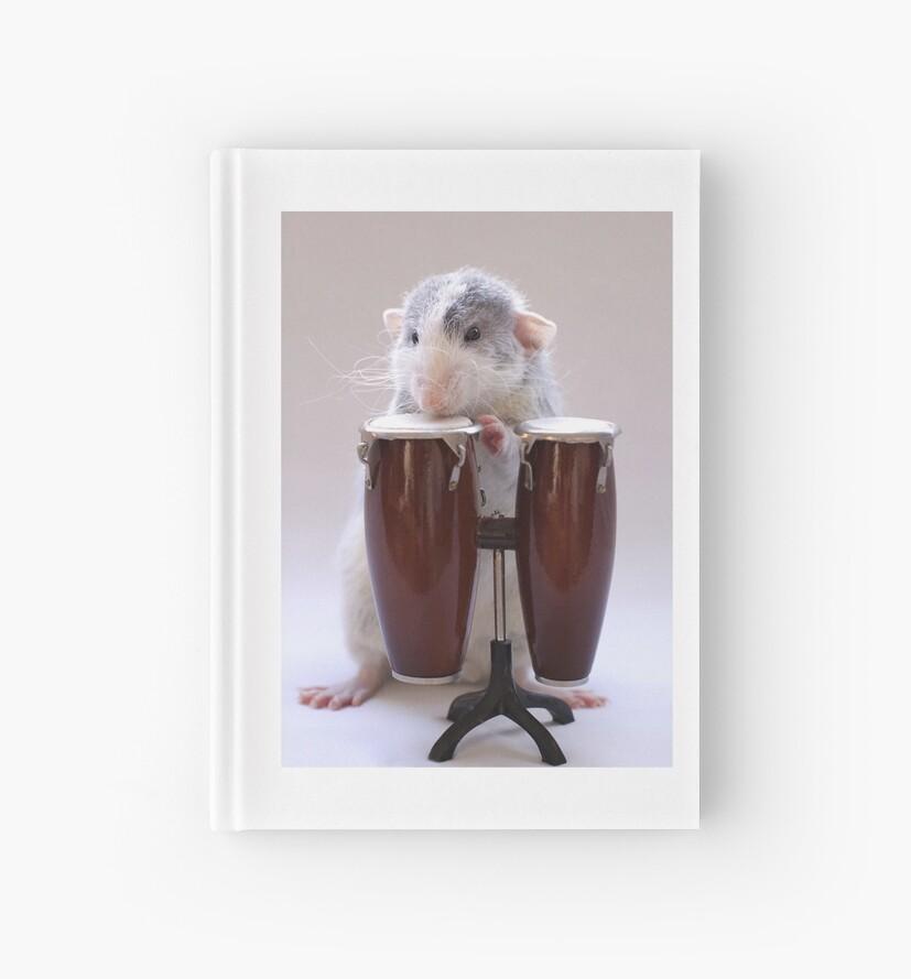 The percussionist :) by Ellen van Deelen