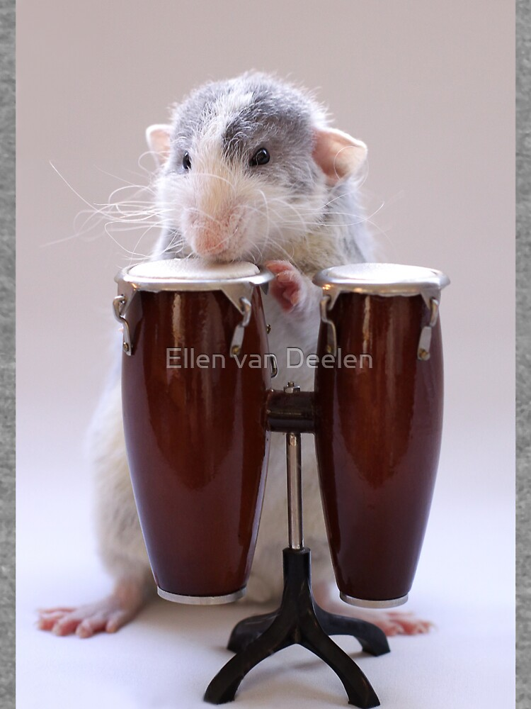 The percussionist :) by Ellen