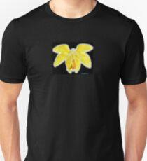 Serafín con armadura dorada Unisex T-Shirt