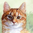 Ginger Cat A030b by schukinart