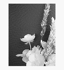 BLACK AND WHITE BUTTERCUP Photographic Print