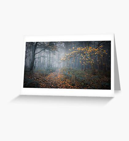 Last Autumn Tree Greeting Card