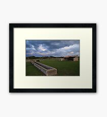 Old Basham's Beach Cow Shed Framed Print