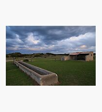 Old Basham's Beach Cow Shed Photographic Print