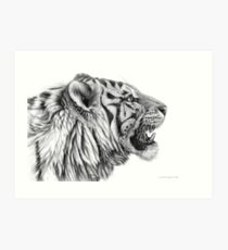 White Tiger profile G01 by schukina Art Print