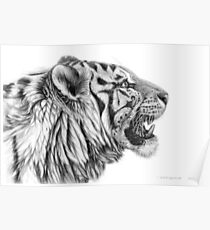 White Tiger profile G01 by schukina Poster
