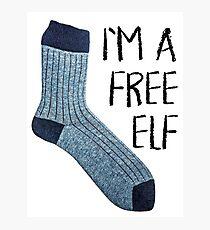 Free elf Photographic Print