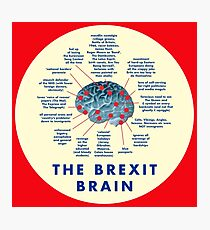 THE BREXIT BRAIN - A GUIDE Photographic Print