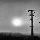 fog on Sheppy by David Tovey