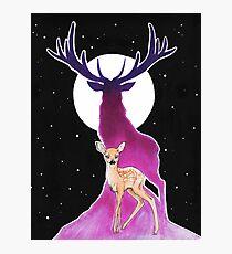 Moon Deer Photographic Print
