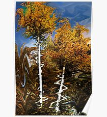 Abstraction of Fall Poster
