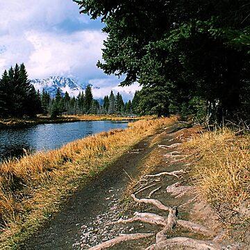 Along Snake River, Grand Teton National Park by DanielleDodds