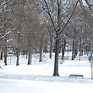 winter in the park by LeonidasBratini