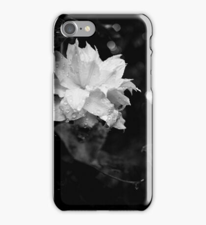 Artic Queen 2 - Clematis - Black and White Photography  iPhone Case/Skin