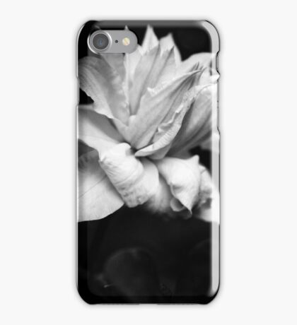Artic Queen - Clematis 03 - Black and White Photography iPhone Case/Skin