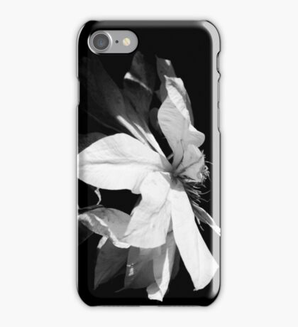 Artic Queen - Clematis 04 - Black and White Photography iPhone Case/Skin