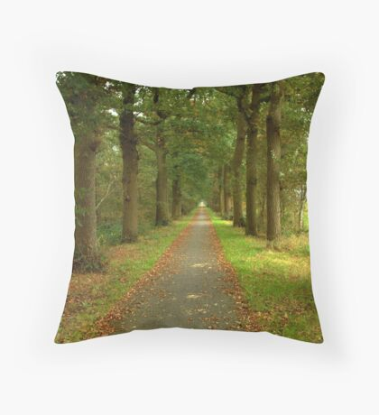 Country Road, Start of Fall Throw Pillow