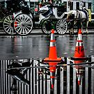 Horse and Carriage by depsn1