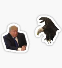 that time a bald eagle attacked donald trump Sticker