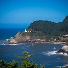Heceta Head Lighthouse Oregon Coast by Tim Cowley