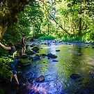 Clear Creek Metzler State Park Oregon by Tim Cowley