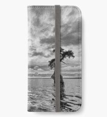 Out standing iPhone Wallet/Case/Skin