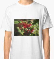 Callistemon flower Classic T-Shirt