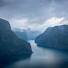Sognefjord Landscape by George Wheelhouse