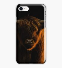 Lowlight Highland Cattle iPhone Case/Skin